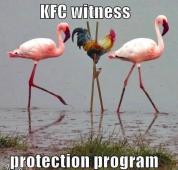 WitnessProtectionProgram