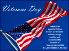 Veterans-Day-Flag-2013